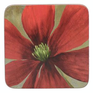 Flower Study Coasters Set of 6 Pieces